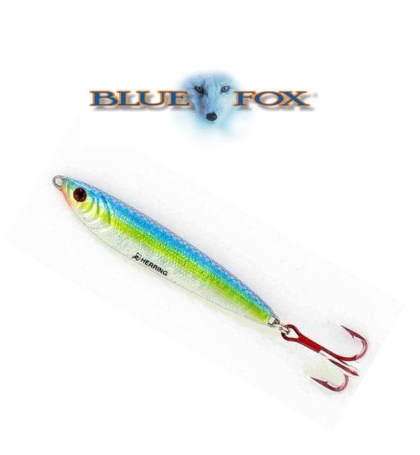 blue-fox-herring