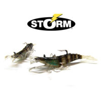 storm-camaron