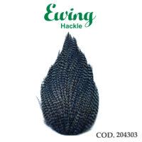 EWING 204303