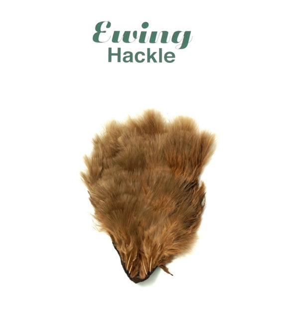 ewing-marabou