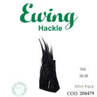 EWING 204479