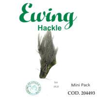 EWING 204493
