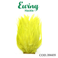 EWING 204435G