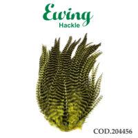 EWING 204456