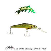 EG-076AL Challenger X70 Color # C30