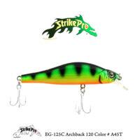 EG-125C Archback 120 Color # A45T